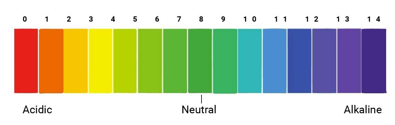 Bảng giá trị của PH